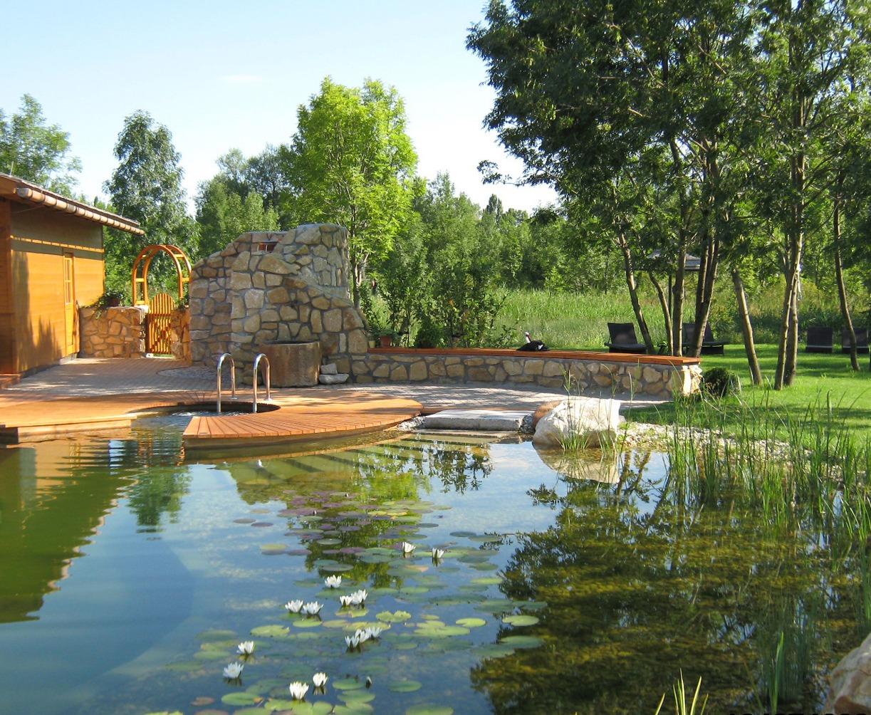 Teich, Seerose, Steinmauer