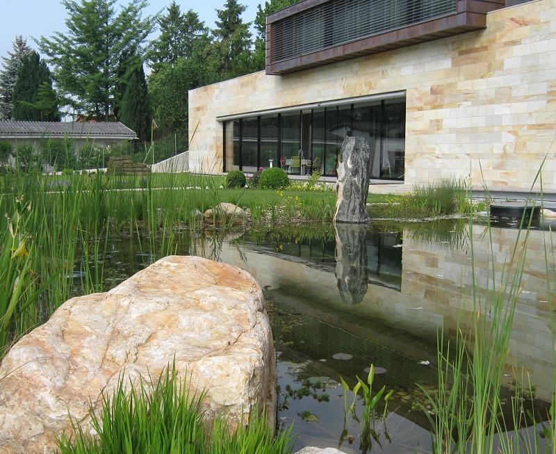 Wasser im Garten, Rasenfläche, Wasserpflanzen