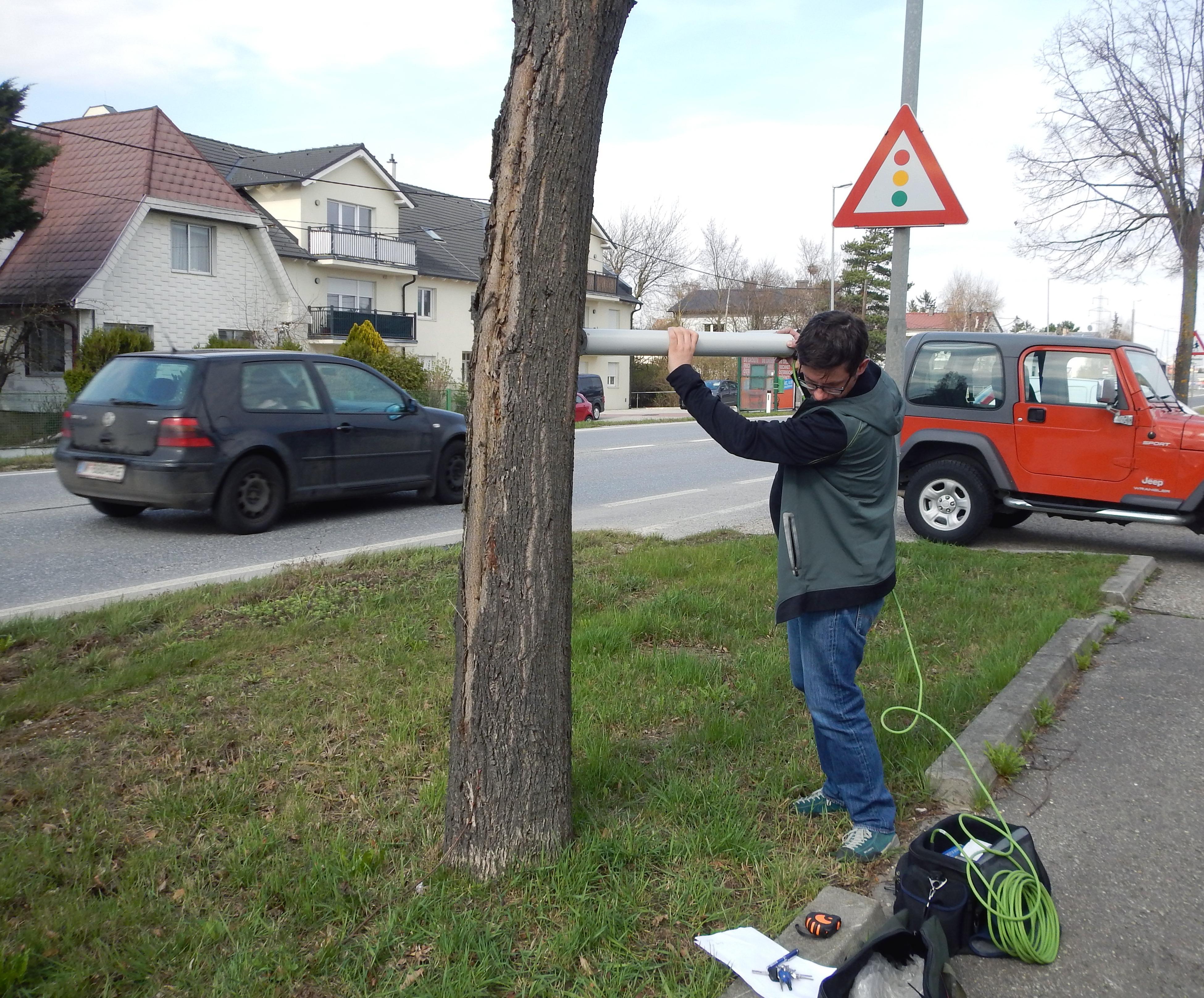 Baumuntersuchung, Resistograph