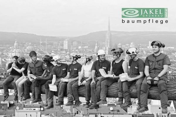 Team Baumpflege