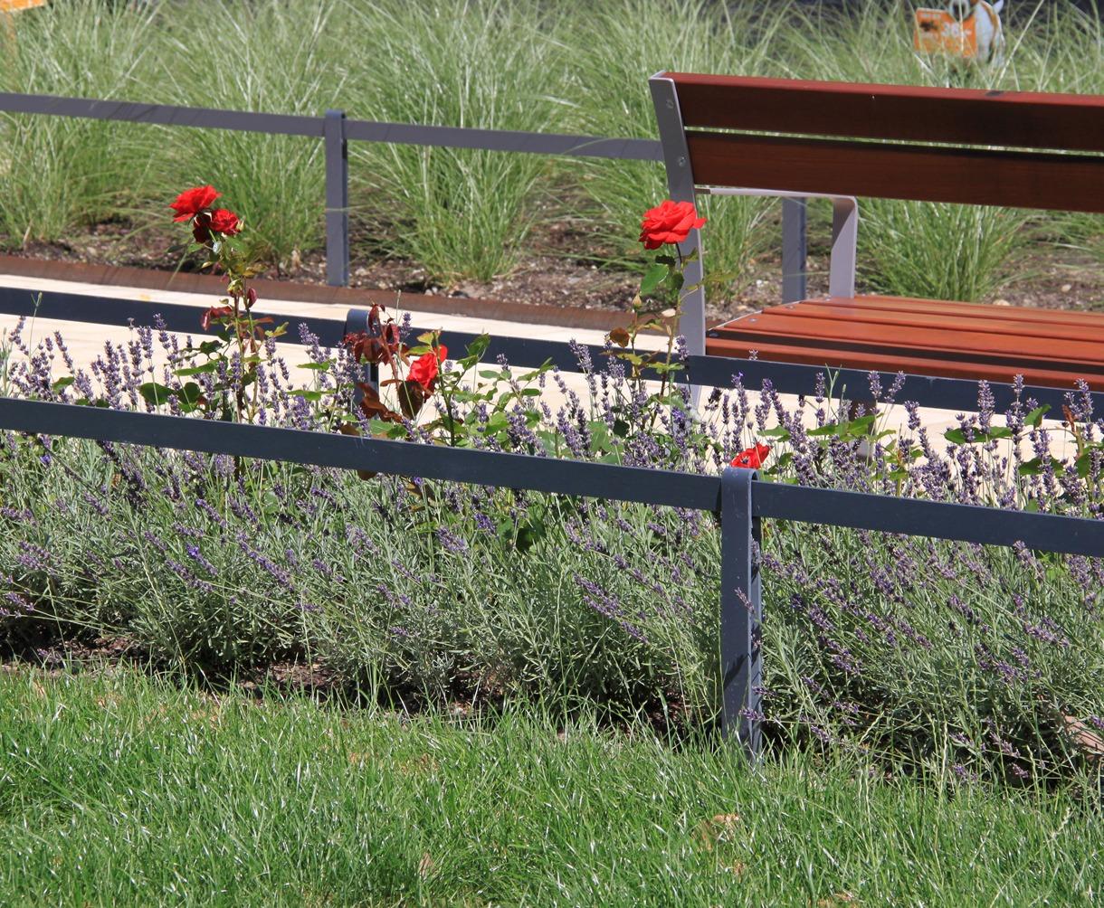 Rosen, Lavendel, Sitzbank