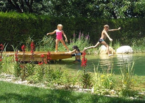 Teich, Spaß am Wasser
