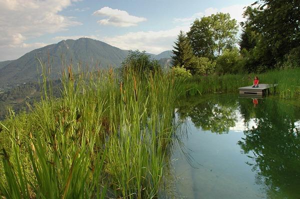 Teich, Holzsteg