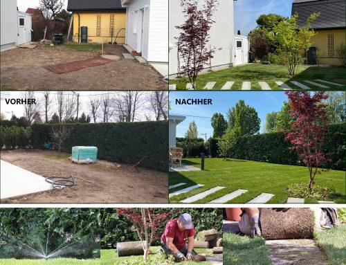 Aktuell: Privatgarten im Vorher/Nachher-Vergleich